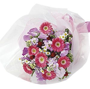 Seasonal Bouquet (red & pink)