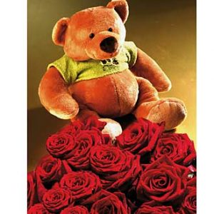 7 Red Roses & Bear